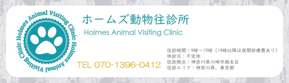 往診専門動物病院|ホームズ動物往診所